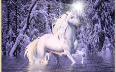 images of unicorns and fairies   Wallpapers Unicorns And Fairies Fairy The Unicorn Pic #19