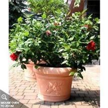 Walmart: PP Plastic-Products 65-35-2 Danielle Round Resin Planter 65-35 14 inch x10 inch - Terra Cotta