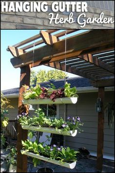 Save Space and Grow Your Own Produce by Making This DIY Hanging Gutter Garden