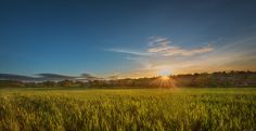 Sunset and dreamy fields Enville. - Beautiful sunset view of fields in Enville.