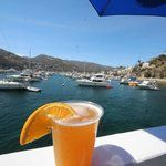 Catalina Island Guide - Things To Do