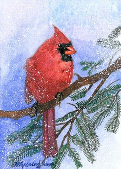 ACEO Limited Edition 10/25- Cardinal in snow, Art print of an original ACEO watercolor painted by Anna Lee, Bird art, Small gift idea