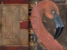 N Taplin's flamingo book