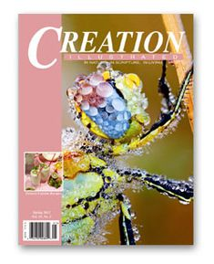 Nature studyscience 1602 people found 101 images on pinterest creation illustrated a christian answer to natl geographic fandeluxe Images