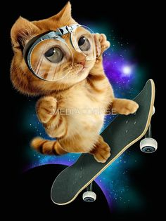 SKATEBOARD CAT by MEDIACORPSE