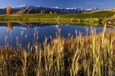 #Golf #JacksonHole // 3 Creek Ranch Golf Club