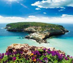 Alla scoperta di Lampedusa e Linosa http://www.viedelgusto.it/travel/viaggi-e/item/2477-lampedusa-e-linosa-terra-mare-e-gusto