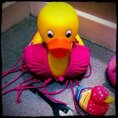 Think this is the outfit! Quacking