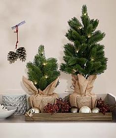 Odkryj to właśnie w Tchibo. Kawa, dom i mieszkanie, sport. Christmas Wreaths, Christmas Decorations, Holiday Decor, Advent, Diy, Home Decor, Xmas Lights, Save Energy, Christmas Decor