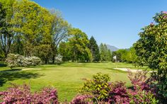 A game of #golf and the culinary delights of the Club House Lugano #Lugano #luganoinblog