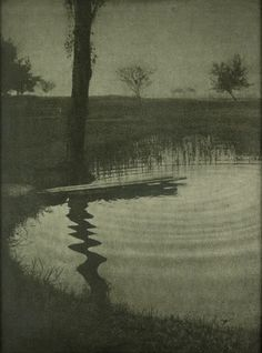 Erwin Raupp - Tree and Pond