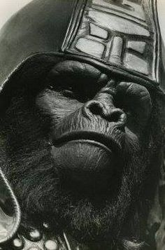 Archives Of The Apes: Planet Of The Apes: The TV Series (1974) Part 33