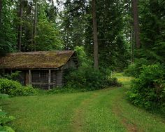 similar to Madam Netta's cabin; only she has a front porch.