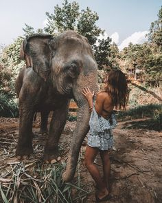Just a regular morning in Chiang Mai. Free yourself from shoes and show us your beautiful pics around the world! Use the hashtag & we will feature our favourite in our stories! Thailand Travel, Asia Travel, Travel Pictures, Travel Photos, Tier Fotos, Summer Photos, Travel Aesthetic, Future Travel, Travel Couple