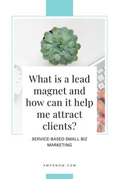 In this article you'll learn some examples of lead magnets for your small business and how you can use this strategy to grow your database and generate new clients. Lead Magnet, Small Business Marketing, Marketing Strategies, Magnets, Canning, Home Canning, Conservation