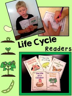 Differentiated Life Cycle Readers for kindergarten and first grade, non-fiction… First Grade Science, Science Classroom, Teaching Science, Science Education, Kindergarten Activities, Teaching Ideas, Science Stations, Science Ideas, Science Lessons