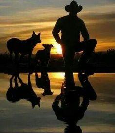 Australian Cattle Dogs...the best!