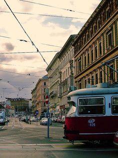 Oh Vienna, I love you