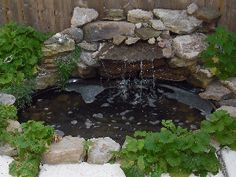 Theme, small pond liners