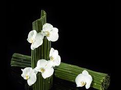 Armani flowers