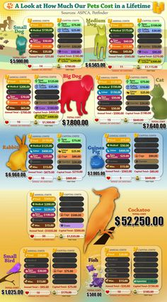 How much owning Fido will cost over his lifetime. Pet ownership is a responsibility, but it's worth it!