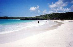 Vieques, Puerto Rico. My friend visits often and raves about the tranquility. i wanna go!