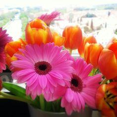 Flores de cumpleaños