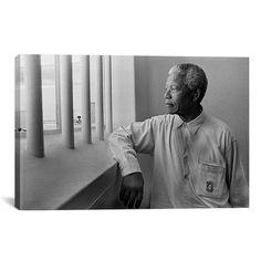 iART 'Nelson Mandela Portrait' Art