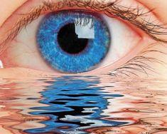 Clear eye floaters eye floaters in one eye,eye floaters wiki eye symptoms,fix eye floaters i have a lot of eye floaters. Eye Treatment, Natural Treatments, Natural Cures, Eye Floaters Cure, Narrativa Digital, Eyes Wallpaper, Photos Of Eyes, Human Eye, Marcel Proust