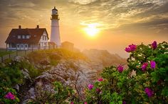 Modifier les Photos: Maison, phare, mer, occidental du Soleil, Hill, sauvages, Rose