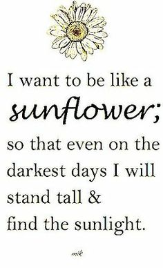 I want to be like a sunflower; so that even on the darkest days I will stand tall & find the sunlight.