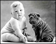 Two little cuties, baby and sharpei / photo: Anne Geddes on Photobucket So Cute Baby, Cute Kids, Funny Kids, Adorable Babies, Pretty Baby, Chubby Babies, Fur Babies, Babies Pics, Baby Pictures