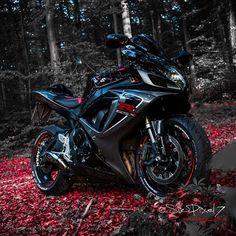 WEBSTA @ sirpixel7 - Autumn bike porn 🍂 ✌🏼️😈--------------------------------------Full size Version on my Facebook page:✅ www.facebook.com/SirPixel7Link on my profile--------------------------------------#gsxr #epic #gsxr600 #suzuki #dainesecrew #daineserider #gixxer #gixxerlove #instabike #instaphoto #instamoto #picoftheday #photooftheday #gopro #suzukigsxr #gsxrnation #gsxrownersgermany #gixxernation #gopromoto #goprooftheday #agvrider #AGV #photoporn #love #bikeporn…