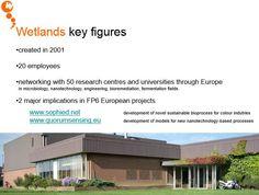 Wetlands engineering key figures (as of 2008)