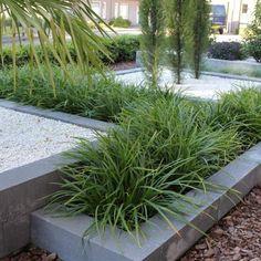 Best Plants For A Drought Tolerant Garden - Useful Garden Ideas and Tips Contemporary Garden Design, Modern Landscape Design, Modern Landscaping, Front Yard Landscaping, Landscaping Ideas, Back Gardens, Small Gardens, Outdoor Gardens, Drought Tolerant Garden