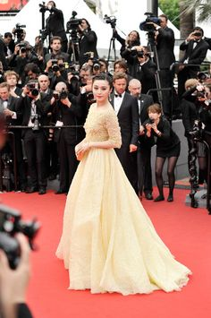 Actress Fan Binbing in Elie Saab. May 16, 2013 in Cannes, France.