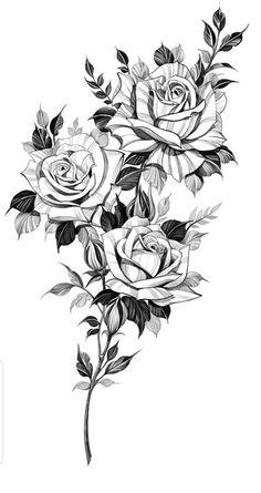 Rose Tattoos, Flower Tattoos, Black Tattoos, Body Art Tattoos, Sleeve Tattoos, Floral Tattoo Design, Mandala Tattoo Design, Flower Tattoo Designs, Flower Tattoo Drawings