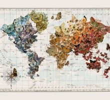 artist maps.  beautiful and unique.  Butterfly Migration Vintage Wall Map Art