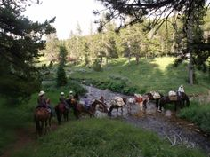 Cache Creek Outfitters in Big Sky offers trail rides and horsepack fly fishing.