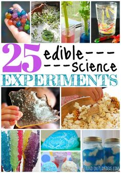 food science - 25 Edible Science Experiments For Kids Food Science Experiments, Science Week, Summer Science, Science Projects For Kids, Science Party, Science Activities For Kids, Preschool Science, Science Fair, Teaching Science