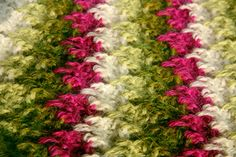 Beautiful!! Larksfoot - unusual crochet stitch patterns.  Great website for some vintage crochet patterns, very pretty.