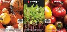 Request a Free Seed Catalog Seed Catalogs, Preserving Food, Preserves, House Plants, Garden Tools, The Selection, Harvest, How To Find Out, Seeds