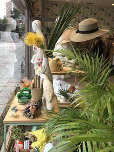 Escaparate e interior realizado por Donegal Cleef Donegal, Visual Merchandising, Ecommerce, Table Decorations, Interior, Plants, Furniture, Home Decor, Shop Displays