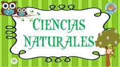 Ciencias Naturales Natural, Stickers, School, Maps, Moldings, Molde, Christmas Drawing, Activities For Kids, Science
