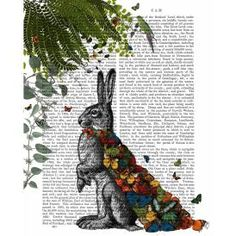 FabFunky - Hare with Butterfly Cloak, Antiquarian Book Print, 20.3 x 25.4cm