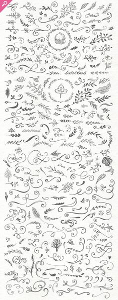 The Handsketched Designers Kit by Nicky Laatz on Creative Market