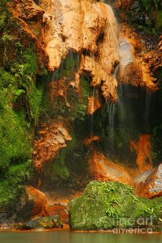 ✮ Caldeira Velha Natural Monument - Sao Miguel island, Azores islands, Portugal
