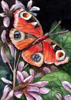 ACEO Original Peacock Butterfly animals insects floral fly flowers wings antenna #Impressionism