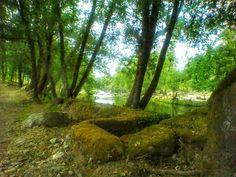 Orgasmos de verdes :D Trecho da parte norte da Ecovia do Vez em Arcos de #Valdevez - http://ift.tt/1MZR1pw -