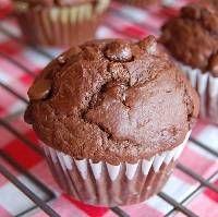 Chocolate Chocolate Muffins Recipe - Chocolate Chip Chocolate Muffins. Made it.  Full of chocolate, but not overly sweet ****
